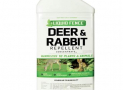 10 Best Rabbit Repellents and Deterrents